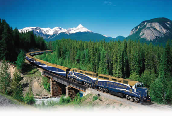Rocky Mountaineer in the woods